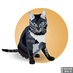 Realistic cat. Beautiful gray. Sitting watching. For your design.