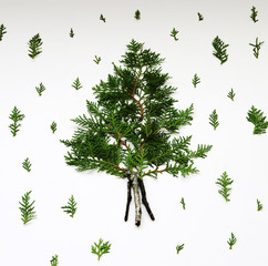 Pine Christmas tree and made . Christmas New Year concept. Flat lay.