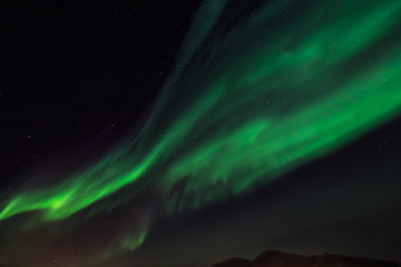 Green northern lights and a stirlight sky  over Nuuk city, Green