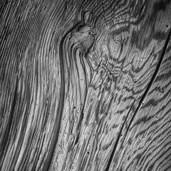 Graues Holz bilder und suchen graues holz