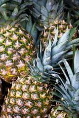Ananas maturi