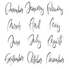 Months handwritten modern calligraphy.