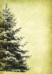 Tree on grunge background