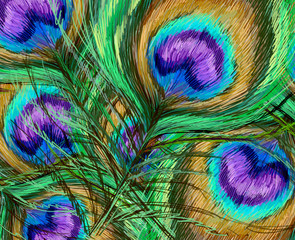 Beautiful exotic peacock features illustration background art
