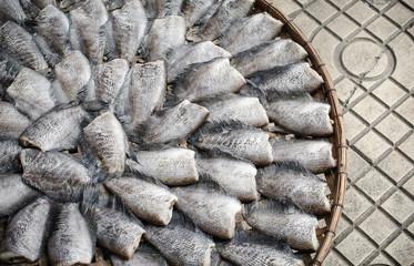 Dried fish expose to sun, Bangkok, Thailand