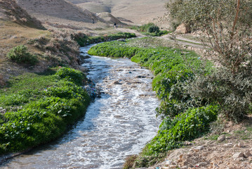 Kidron river  in Judean desert. Israel