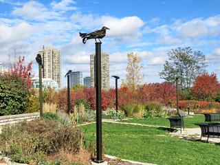 Toronto Lake iron birds 2016