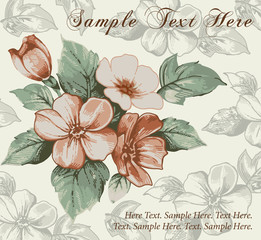 Flowers apple realistic. Beautiful vintage vignette. Greeting card. Invitation. Drawing, engraving. Vector victorian style illustration.