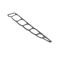 long shell scetch. vector