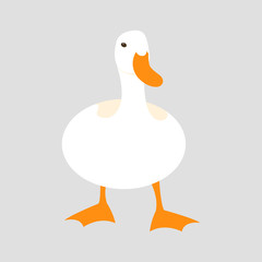duck vector illustration style Flat