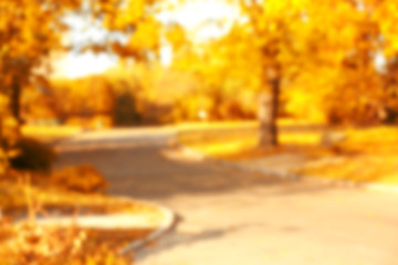 Blurred autumn park background