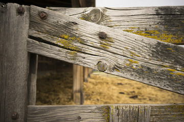 Knotty Fence Gate Farm Barn Wood Grain Moss