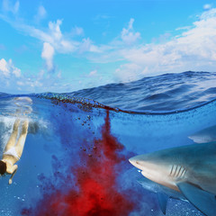 dangerous bloody shark diving