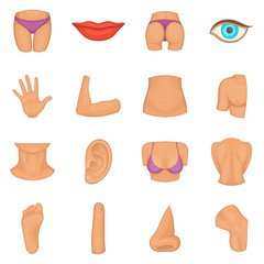 Body parts icons set. Cartoon illustration of 16 body parts vector icons for web