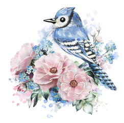 watercolor flowers, rose with me-nots and blue jay. floral illustration, in Pastel colors. branch of flowers isolated on white background. Leaf and buds. composition for  greeting card. Splash paint
