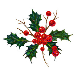 Holly Berry Vector illustration. Botanical drawing