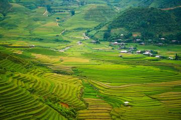 Photo sur Aluminium Vert Terraced rice field in Mu Cang Chai, Vietnam