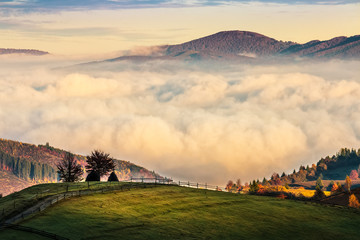cold morning fog with golden hot sunrise over rural area in mountain. fence and trees with colorful foliage on the green meadow