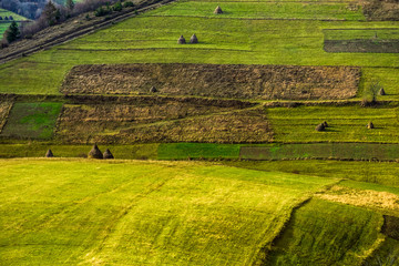 green agricultural field with haystack on hillside in mountains in morning light