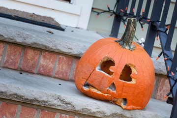 Moldy Jack-o-lantern After Halloween