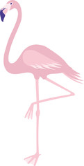 Pink Flamingo Standing on One Leg