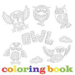 Set of funny cartoon owls, contour image on a white background, the coloring book