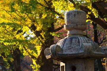 靖国神社 灯篭に黄葉
