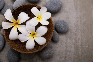 Foto op Plexiglas Spa Three frangipani in wooden bowl with spa stones on grey background.