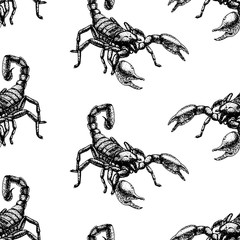 Hand drawn seamless pattern with scorpion. Background design.