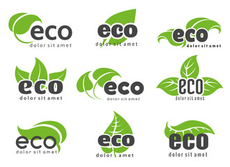 Eco and nature logo labels with green leaves isolated on white background. Vector illustration