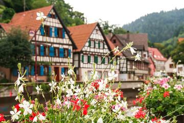 the typical houses of  Schiltach, Black Forest, Germany