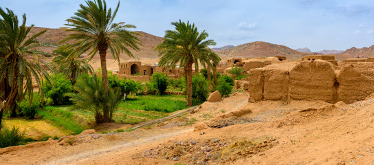 village from oases in the desert of Iran