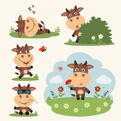 Vector set funny cow in different poses on summer meadow with flowers. Collection cow in cartoon style.