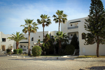 White houses and green palms of Sousse, Tunisia