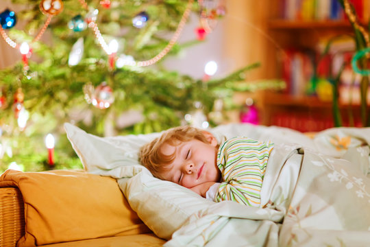 Little cute kid boy sleeping under Christmas tree