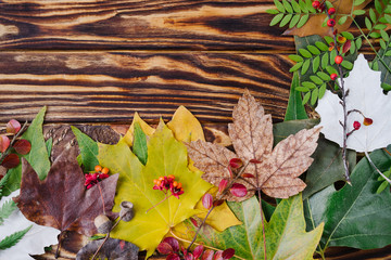 Autumn composition of colorful leaves and berries on wooden background. Top view, flat lay, copy space.