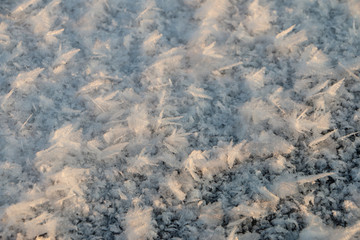 a picture of frost on a frozen lake, snow crystals, ice crystals