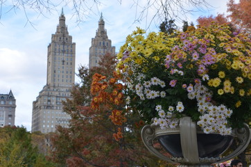 Central Park in the autumn. Manhattan, New York, USA.