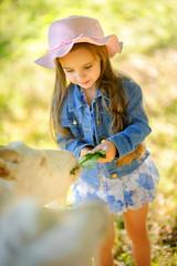 girl feeds goats