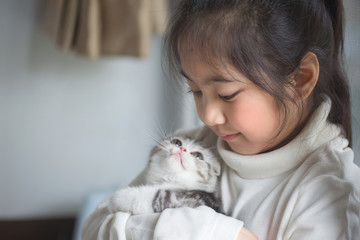 Happy little Asian girl hugging lovely scottish fold kitten