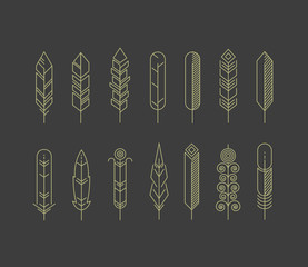 Wall Mural - Linear feathers vector icons