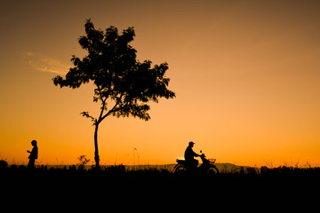 Silhouette of farmer driving motorcycle on field in harvest season,Happy farmer at sky sunrise in the morning