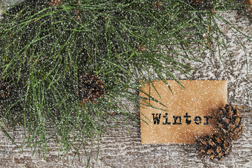 pine branches and cones, a map with text on snowy background