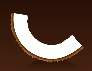 Coconut - single piece on brown background - vector illustration.