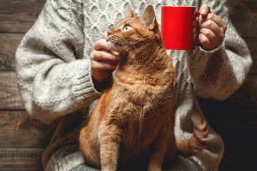 Girl in warm sweater drinking coffee with red cat on her lap