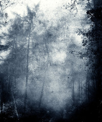 Beautiful Abstract Faded Grunge Background With Trees