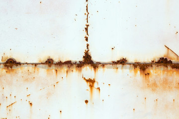 Rusty metal wall. Some leaks of rust visible. Copyspace. Wall mural