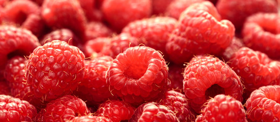 raspberry juicy ripe