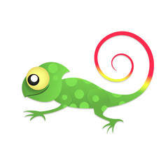 Fun chameleon baby