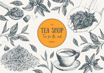 Tea Shop vector illustration. Vector card design with tea. Tea house poster. Vector hand drawn set. Linear graphic